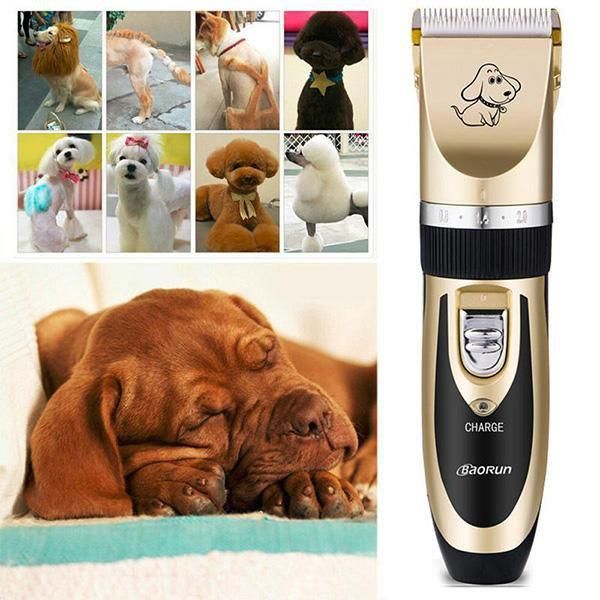 The Worlds Best Professional Rechargeable Pet Trimmer Dog Clippers Dog Grooming Dog Grooming Clippers