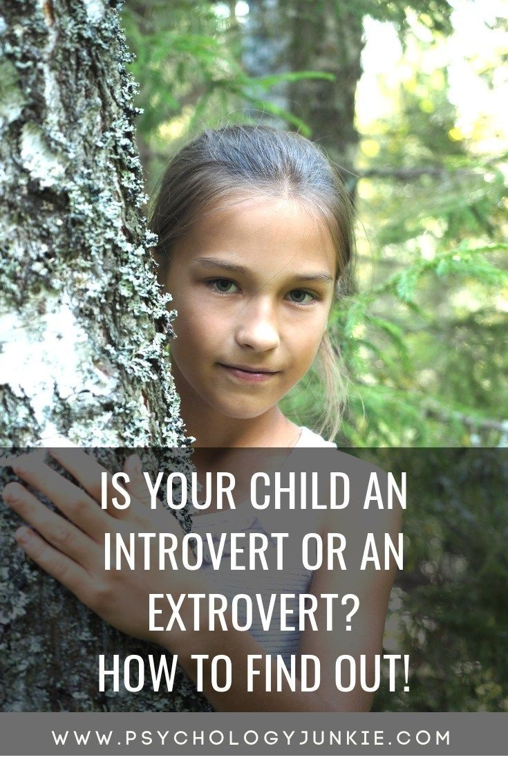 Dating an introvert personality in children. Dating an introvert personality in children.