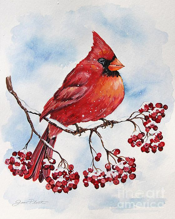 Check out this new painting that I uploaded to plout-gallery.pixels.com! http://plout-gallery.pixels.com/featured/cardinal-and-winter-berries-jp3893-jean-plout.html