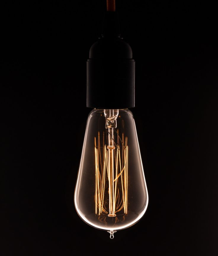 Vintage Light Bulb Squirrel Cage Filament
