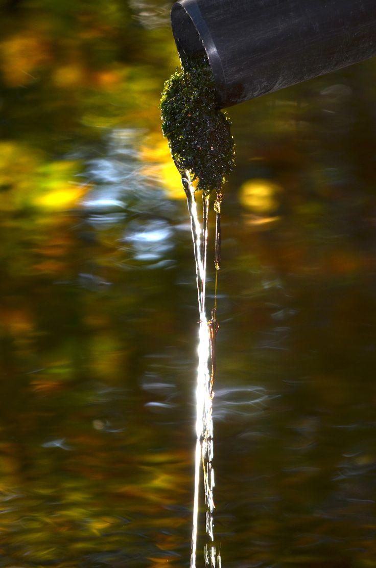 Høsten ..og vann i vann..mitt bilde