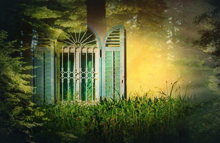 창, 셔터, 초현실적인, 신비, 분위기, 신비한, 로맨틱, 작곡, 숲, 햇빛, 경치, 장면, 빛