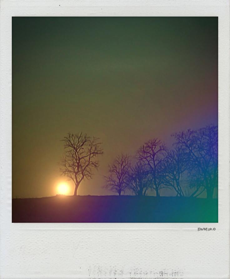 MILLE PAROLE Sei una nuvola, nascosta nelle pieghe di un tramonto, o di un alba,  una lacrima nel mio deserto mentre taglio l'ansia di una bufera, con la lingua, io, con mille parole spinte tra le gambe tue/mie e la differenza è se scorrermi o [tra]scorrermi.   http://paralleluniverseinpolaroid.wordpress.com