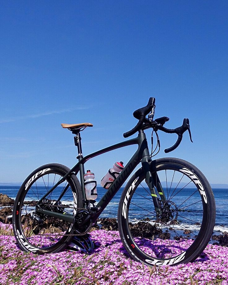 The Diverge 1x amongst nature-its natural habitat.