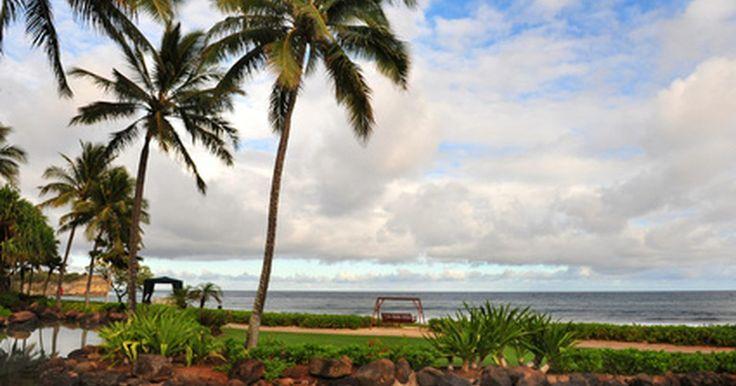 """Viajar a Hawaii en temporada baja. Para una familia con un presupuesto o una pareja en busca de una escapada no muy llena de gente, la temporada baja puede ser un momento ideal para disfrutar de la belleza natural de Hawaii. El término """"fuera de temporada"""" se utiliza para referirse a una época del año en que hay la menor cantidad de viajes y las tarifas son más bajas. Cada una de ..."""