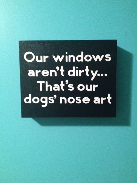 our windows aren't dirty, that's just our dogs' nose art.