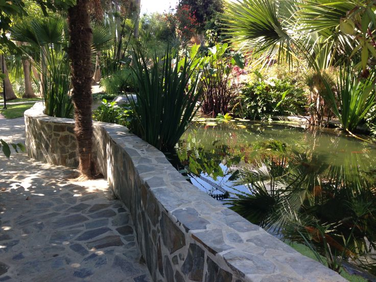 23 best images about raised ponds on pinterest gardens for Elevated koi pond