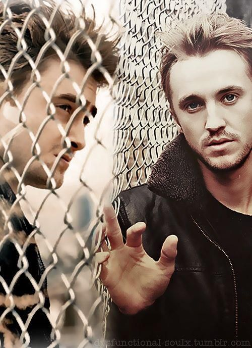I don't know why, but I am in love with this picture. Daniel Radcliffe and Tom Felton. <<--- I know.. there's just something about it.