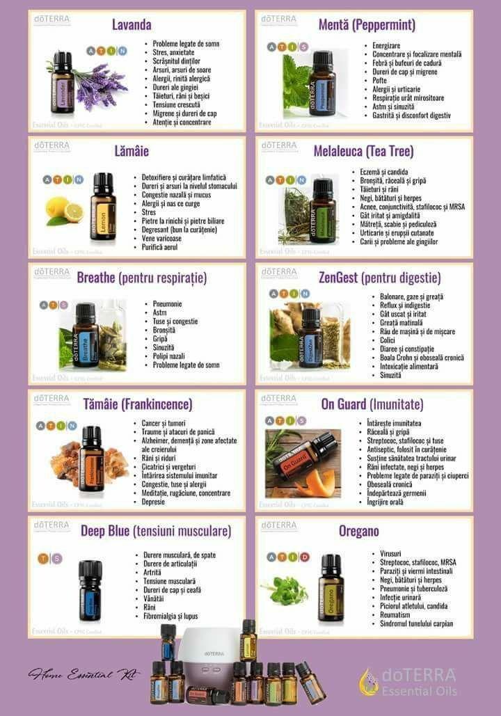 Venele varicoase - 3 uleiuri esențiale pentru tratament - Doza de Sănătate