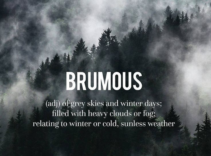 Not my favorite weather. . . . . #devonstrang #wordoftheday #wotd #word #words #wordporn #dictionary #language #definition #brumous #cold #dark #winter #fog #foggy #mist #heavy #clouds #weather #grey #gray #sky #skies #depressing...