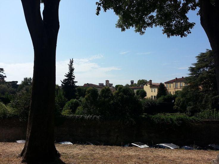 Lucca, 20 agosto 2016, ore 15.32