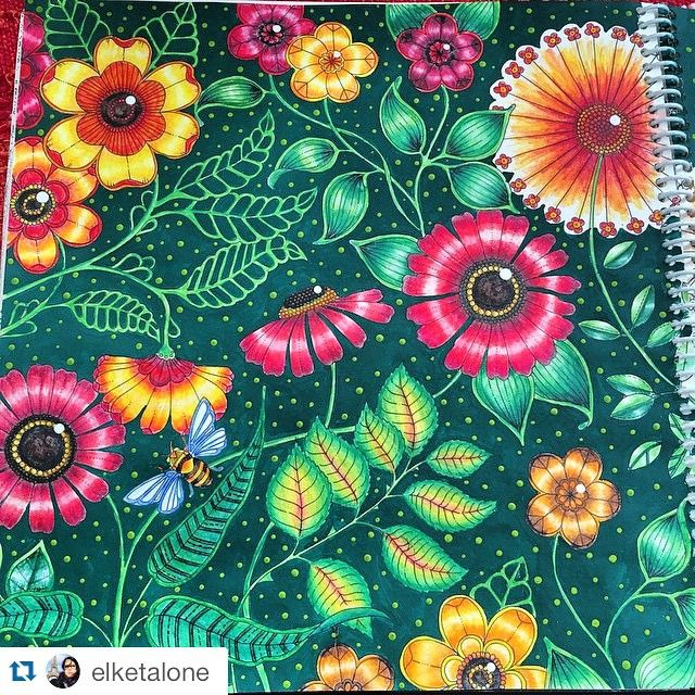 flores jardim secreto:Johanna Basford Secret Garden Flowers