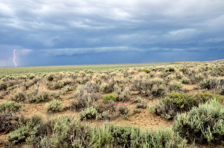 A new and more dangerous Sagebrush Rebellion — High Country News