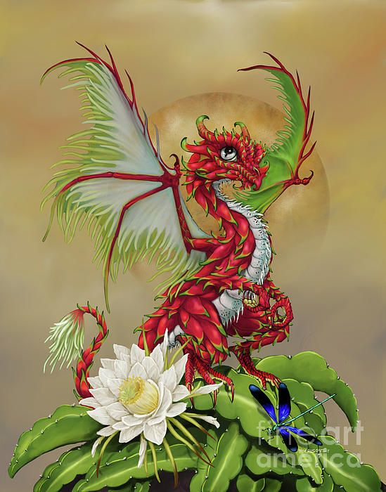 Dragon Fruit Dragon Digital Art by Stanley Morrison