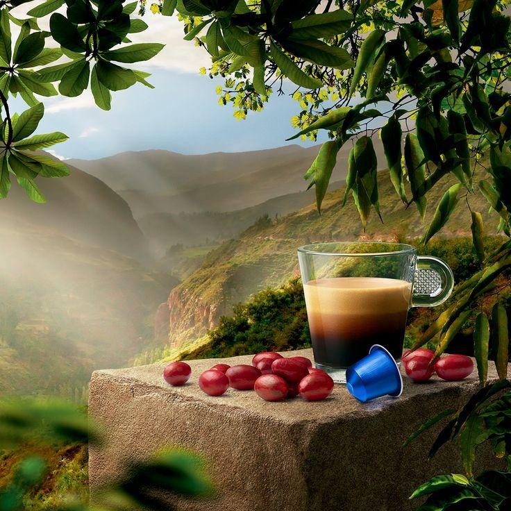 Nuestros expertos te invitan a descubrir el nuevo Limited Edition, Perú Secreto, un espresso intenso, dulce y completo, realzado con unas notas tostadas y de cacao.