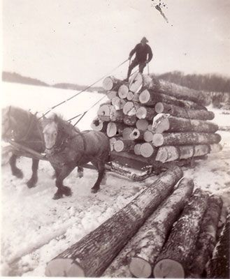 horse drawn sled images | Horse-drawn Logging Sled at Marsden's, circa 1930: Almaguin Highlands ...