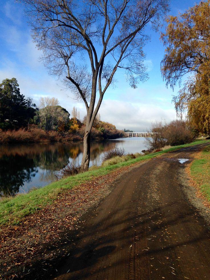 Finding inspiration on beautiful Tassie autumn days.