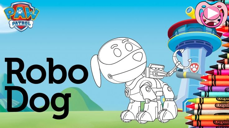 Characters from Paw Patrol 🐾  Coloring Robo Dog