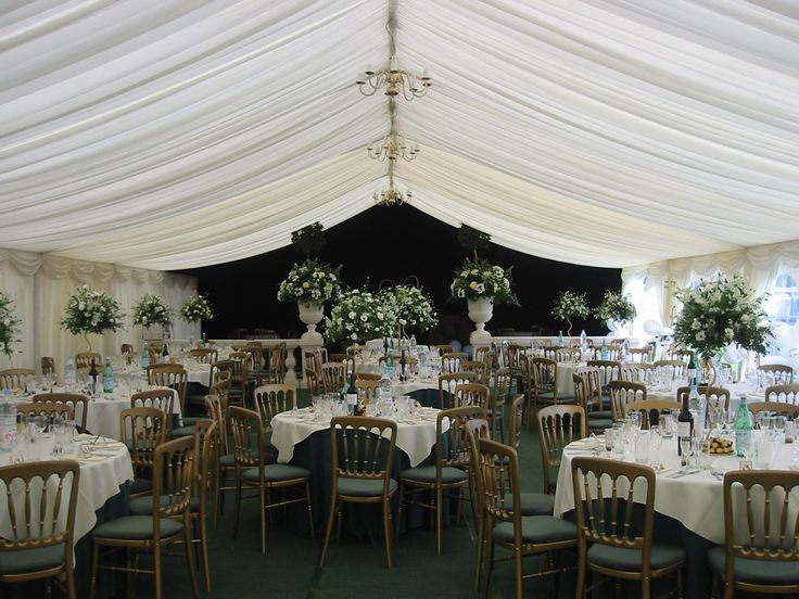 Gilt chairs with green seat pads  http://www.richardsonmarquees.co.uk/