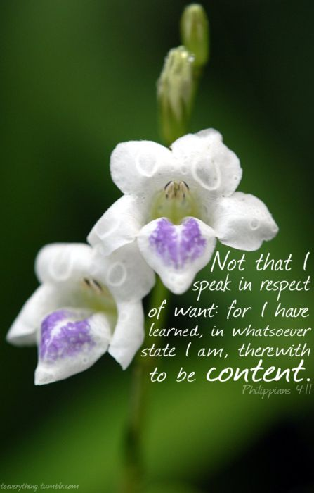 Philippians 4:11 ~ Contentment is not possessing everything, but giving thanks for everything you possess.