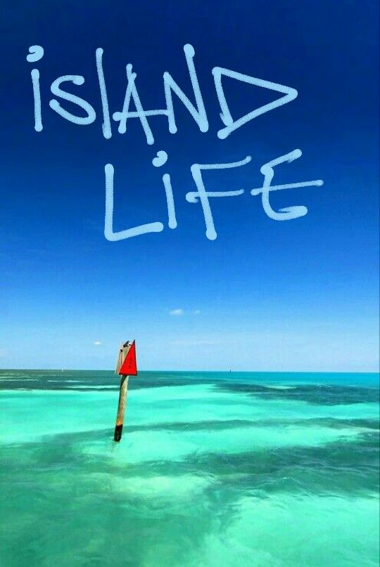 576 Best Images About Key West Amp Florida Keys On Pinterest