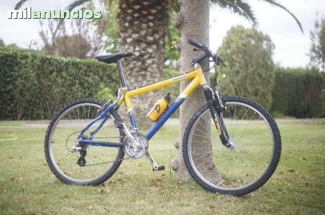 MIL ANUNCIOS.COM - Compra venta de bicicletas: montaña, carretera, estáticas, trek, GT, de paseo, BMX, trial, en Zaragoza