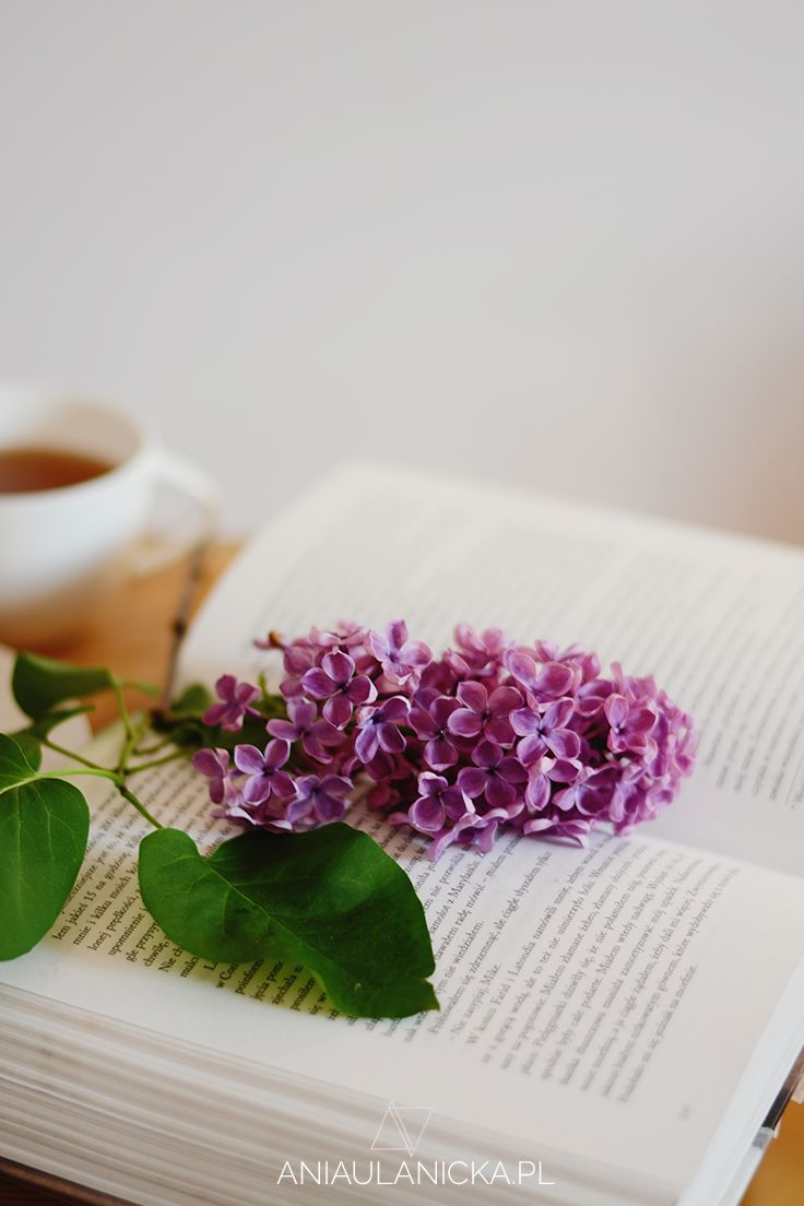 Book and lilac.