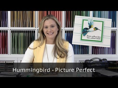 Hummingbird - Picture Perfect Stamp Set from Stampin Up! - YouTube--*-search Picture Perfect on web site for measurments*