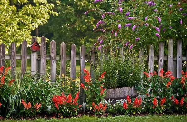 fence: Gardens Fence, Country Gardens