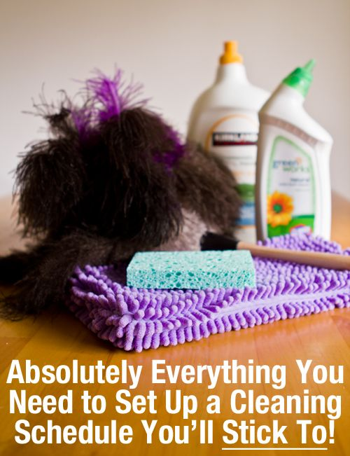 I could try anyway......Modern Parents Messy Kids: Project Organize Your ENTIRE Life: Mega Cleaning Action Plan
