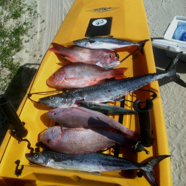 129 best images about fishing tips on pinterest kayak for Kayak fishing tips