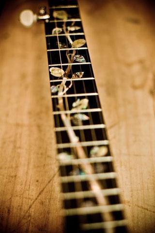 One gorgeous banjo.