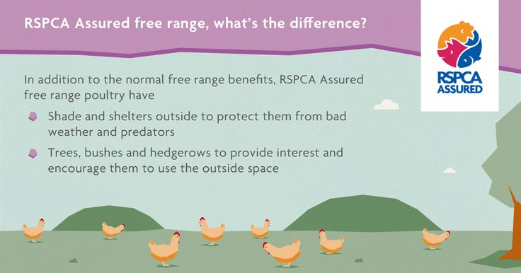 What does RSPCA Assured free range mean?
