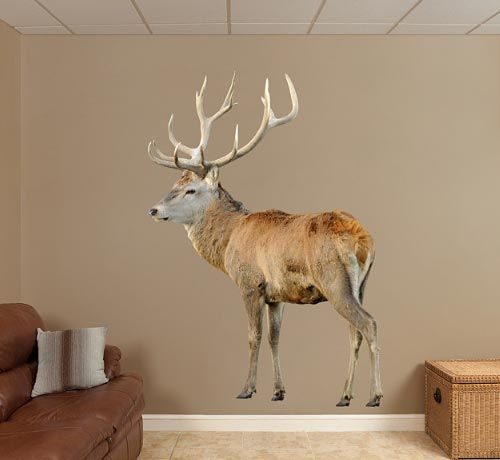 Deer Wall Decals | Deer Red Buck Wall Decals