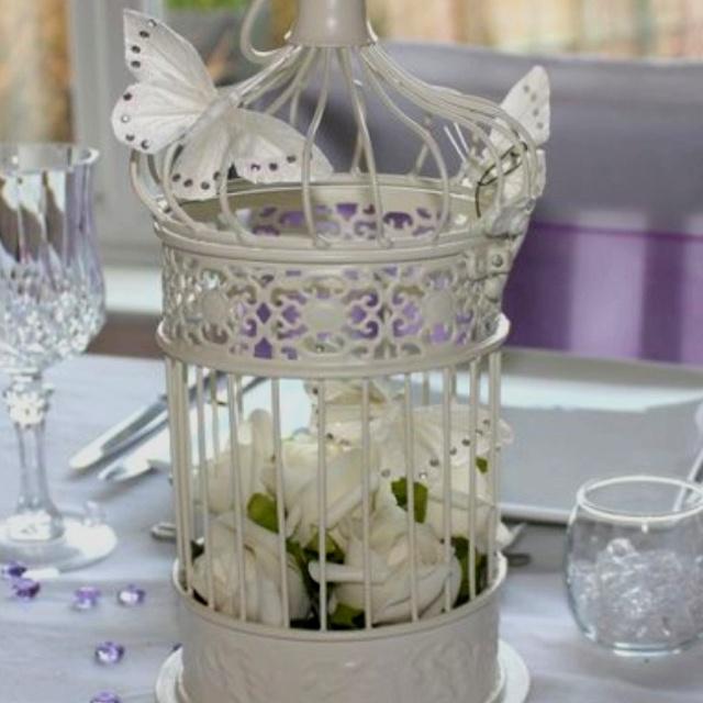 I love the bird cage idea Bird cage decor, Bird cage