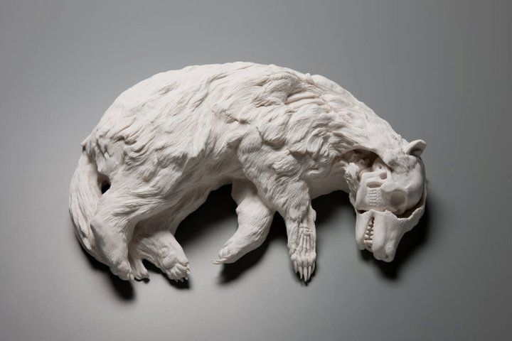 Kate MacDowell, ceramic sculpture