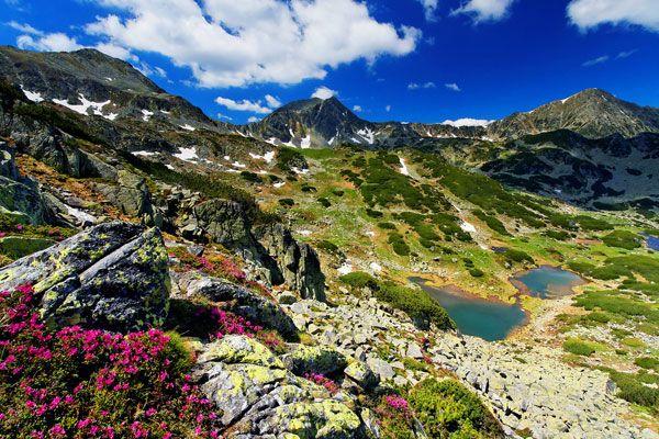 De Retezat bergen - ROEMENIË  Met meer dan tachtig meren en honderden verschillende bloemen en planten, is het Nationaal Park Retezat absoluut een Roemeense trekpleister. De hoogste begtop is de Peleaga, die 2.509 meter boven de zeespiegel uittorent. Wie de conditie heeft om de top te bereiken, wordt beloond met een fantastisch uitzicht op al dat natuurmoois.