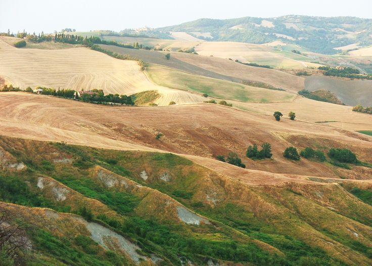 agriculture north of Urbino (Italy)