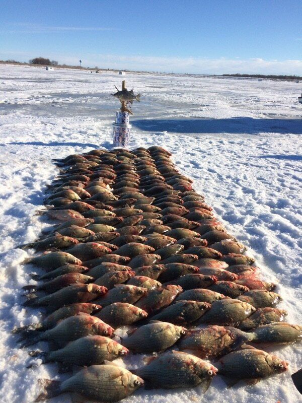 15 best ice fishing devil 39 s lake north dakota images on for North dakota fishing report