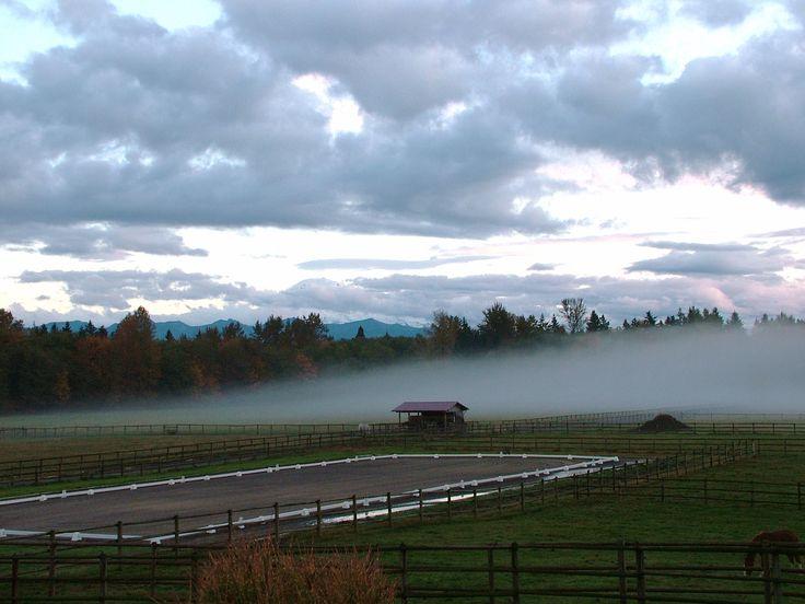 279 Best Outdoor Arenas Images On Pinterest Dream Barn