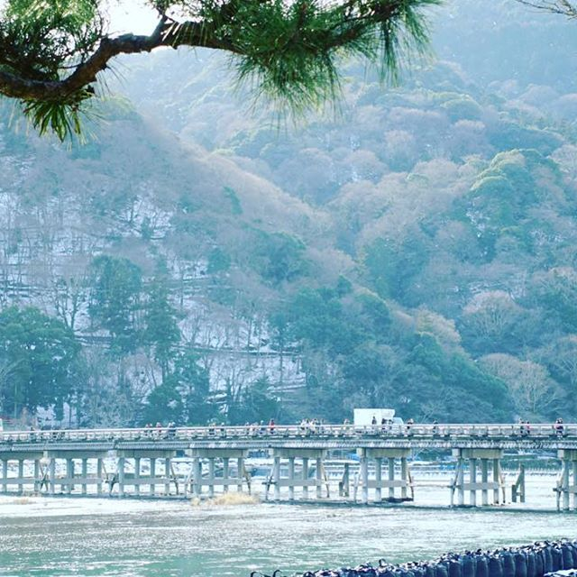 まだ雪が残る嵐山⛄️ #京都 #嵐山 #kyoto #写真好きな人と繋がりたい