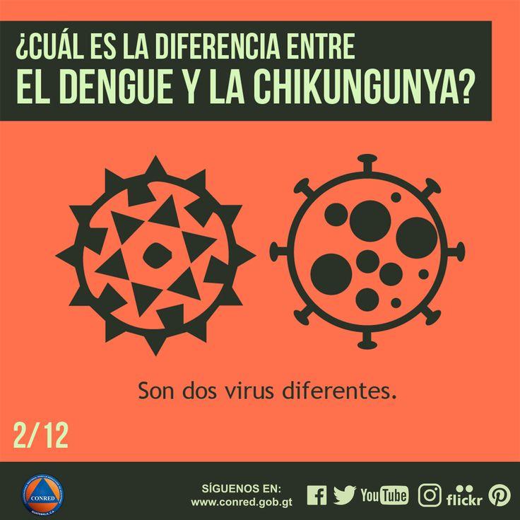 Son dos virus diferentes.