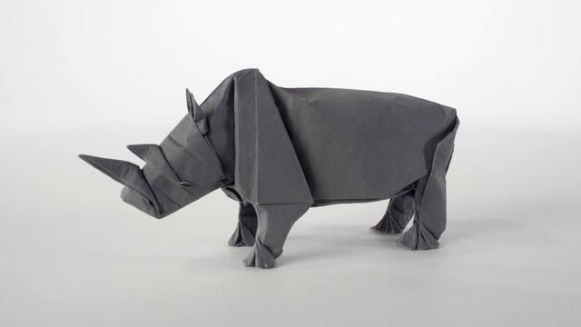 Origami Rhino Unfolding. Video by MABONA ORIGAMI. #stopmotion #animation #origami