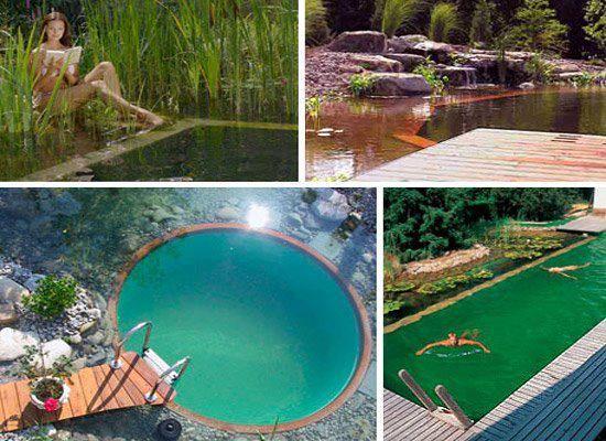 17 best images about piscinas biol gicas algunos ejemplos for Piscinas biologicas