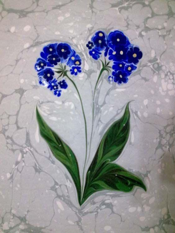 ebruda çiçek çeşitleri - Google'da Ara
