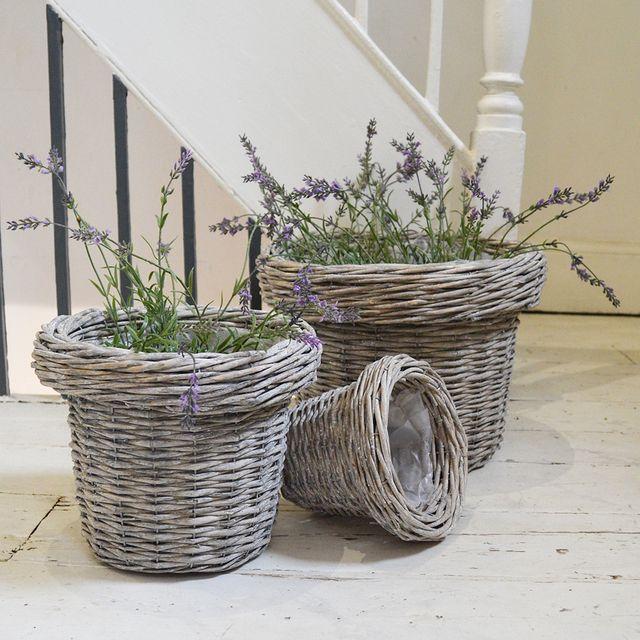 Randwick Willow Planters