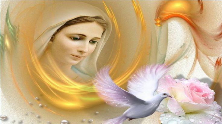 Mensajes de la Virgen de Medjugorje, Mensaje del 25 de noviembre de 2016