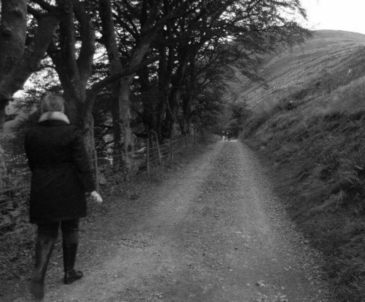 the Oak Tree Lane journey.......