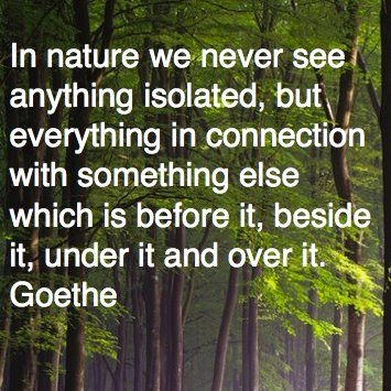 In nature we never see anything isolated, but everything in connection with something else which is before it, beside it, under it and over it. - Johann Wolfgang Goethe