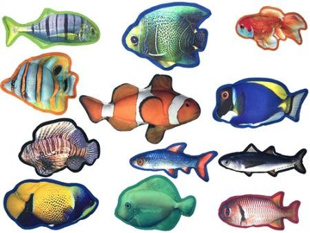 Awesome fish toys for your dog!